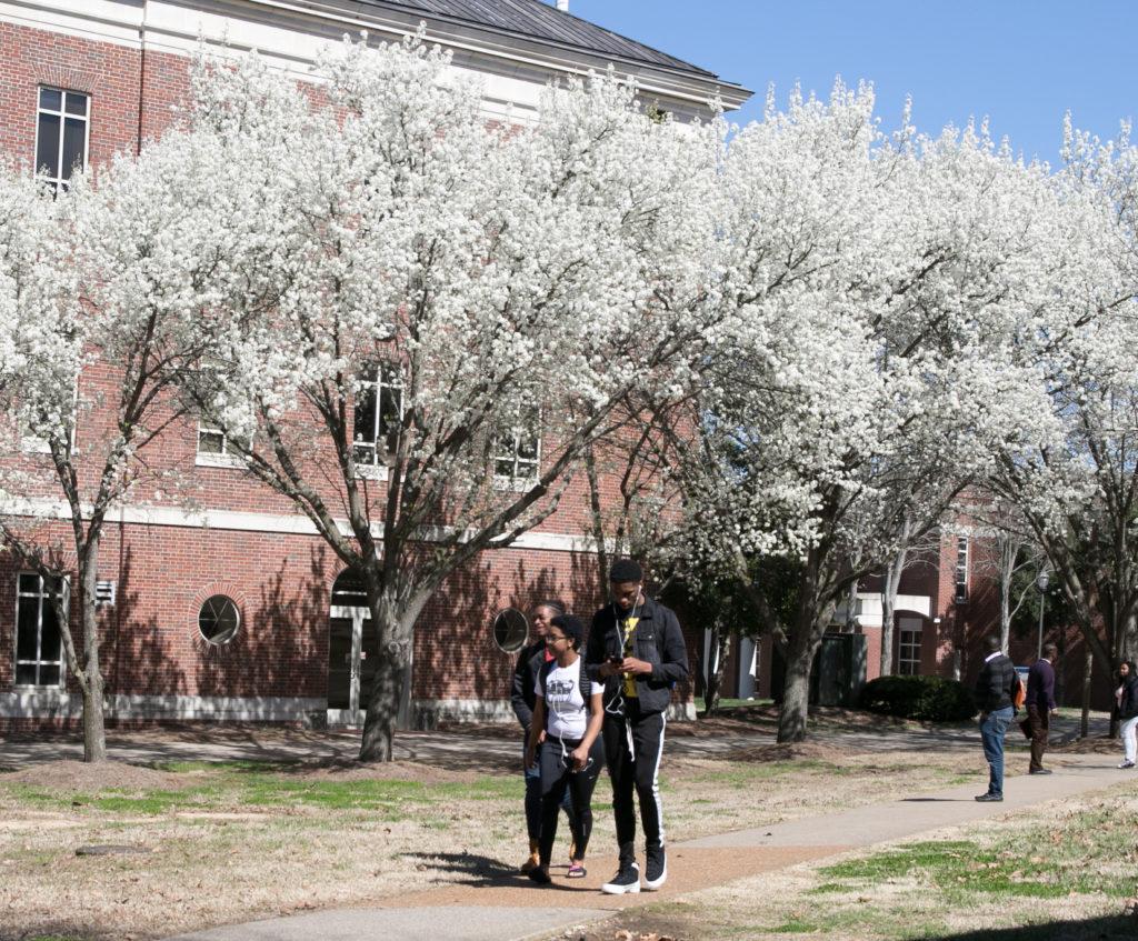TSU Campus