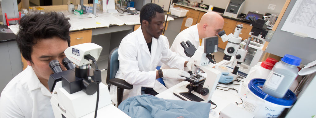 TSU Lab Research